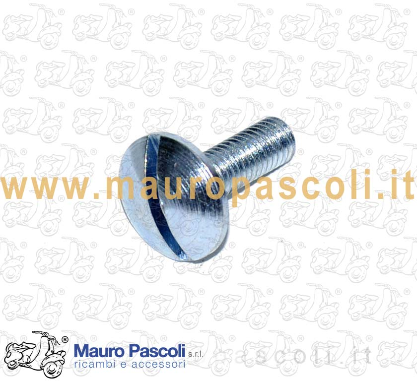 Bolt Slotted screw for mudguard side fixing