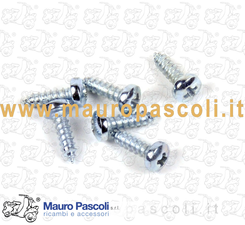 Kit 6 screw (beading fixing)