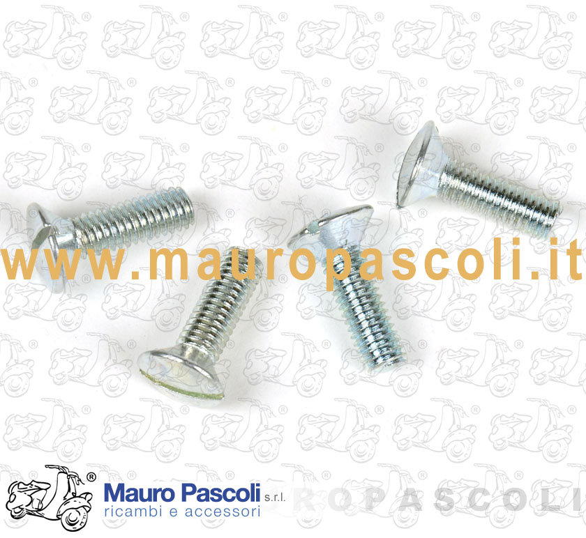 Kit n ° 4 screws fixing bridges stand