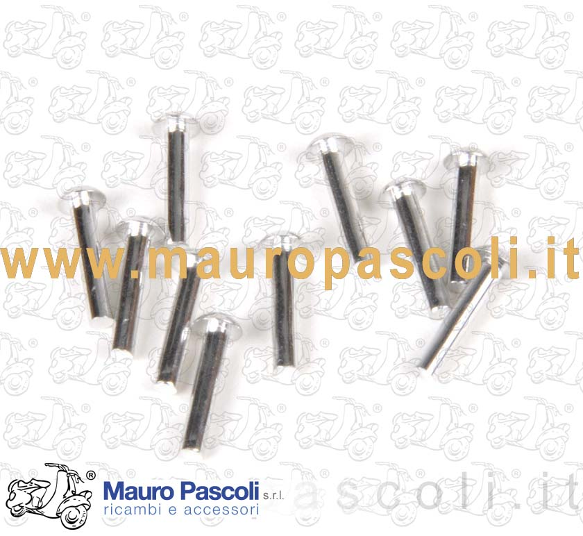 Small rivets (Kit 10 pcs) for Front name plate