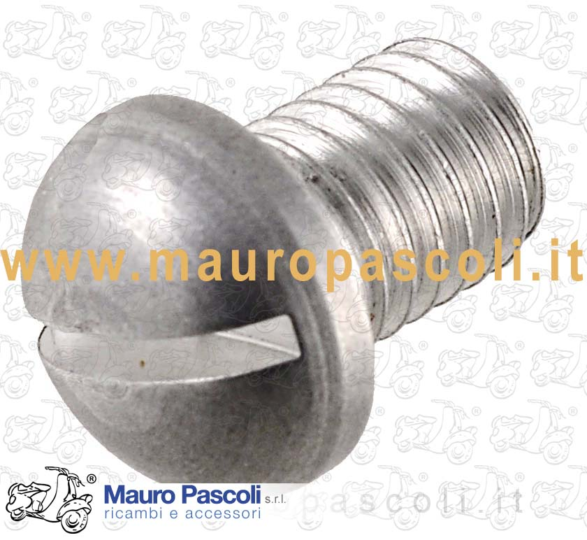 Aluminum Screw